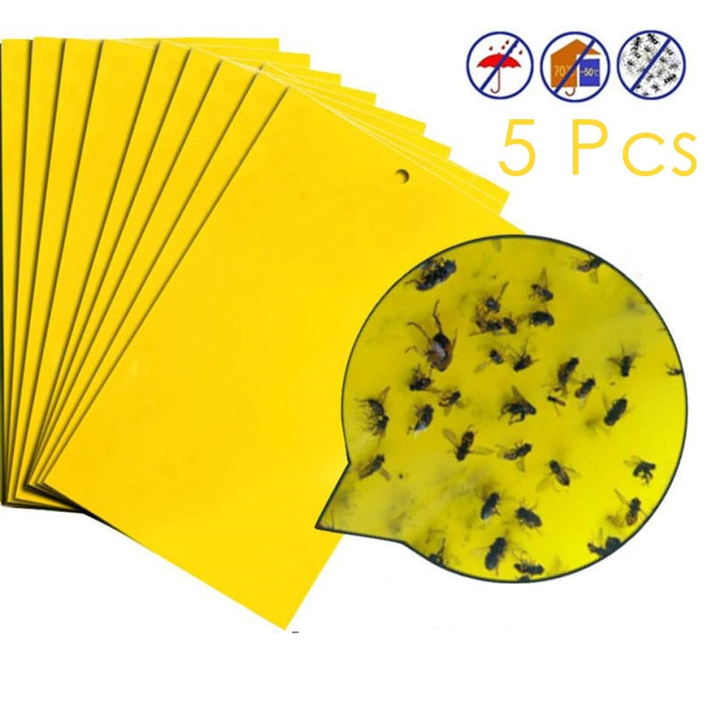 5Pcs Dual-Sided Bugs Sticky Board For Capture Insects Killer Pest Control Glue Sticker Strong Flies Traps Sticky Traps - Smoulder Products