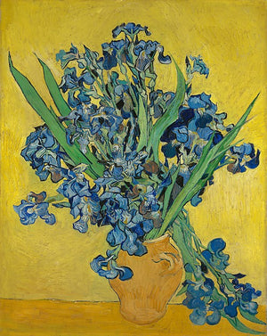 Hand Painted Oil Painting Irises Van Gogh Famous Painting Reproduction Canvas Van Gogh Irises Painting on Canvas - Smoulder Products