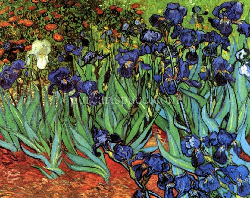 Irises Flowers Garden Vincent Van Gogh oil painting reproduction Artwork Pictures on Canvas Wall Art for Bedroom Home Decoration - Smoulder Products