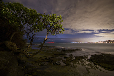 A Seat of Stillness by Barry Khan. A beautiful view of a beach in Hawaii at dusk with a tree in the foreground on the left and rolling clouds and city lights in the distance.