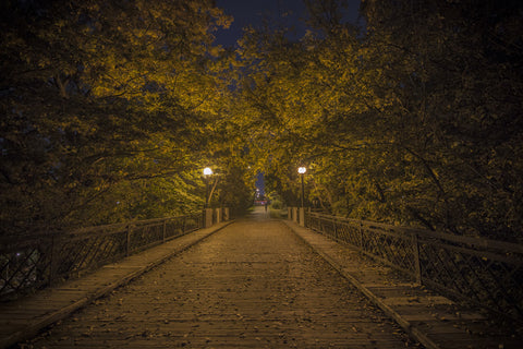 Eerie walkway by Barry Khan. Colour photograph of a barely lit tree lined walkway at night.