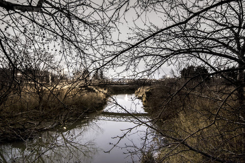 Still Winter Night by Barry Khan. Colour photograph of a river with a bridge and bare tree branches in the foreground.