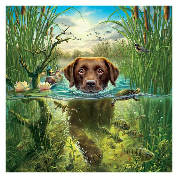 Swimming Dog - Full Round Diamond Painting