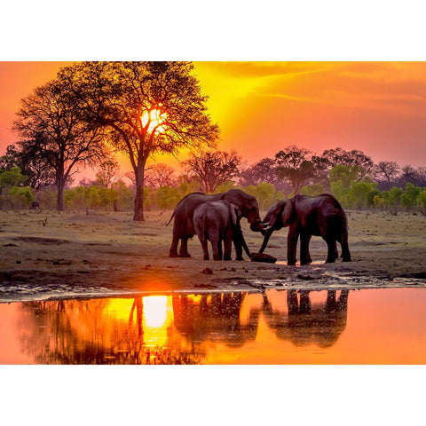 Sunset Elephant - Full Round Diamond Painting