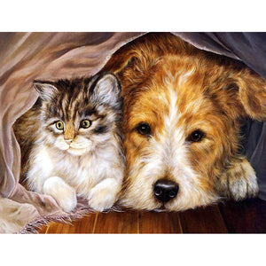 Cat Dog - Full Round Diamond Painting