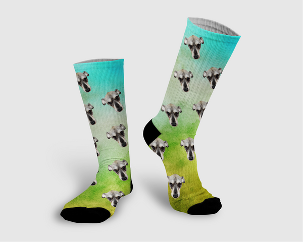 Water Color Collection Socks - Pawpular Design