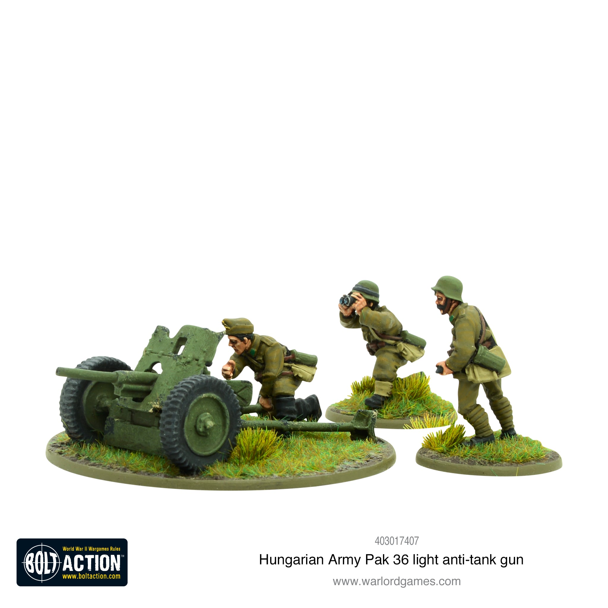 Hungarian Army Pak 36 light anti-tank gun