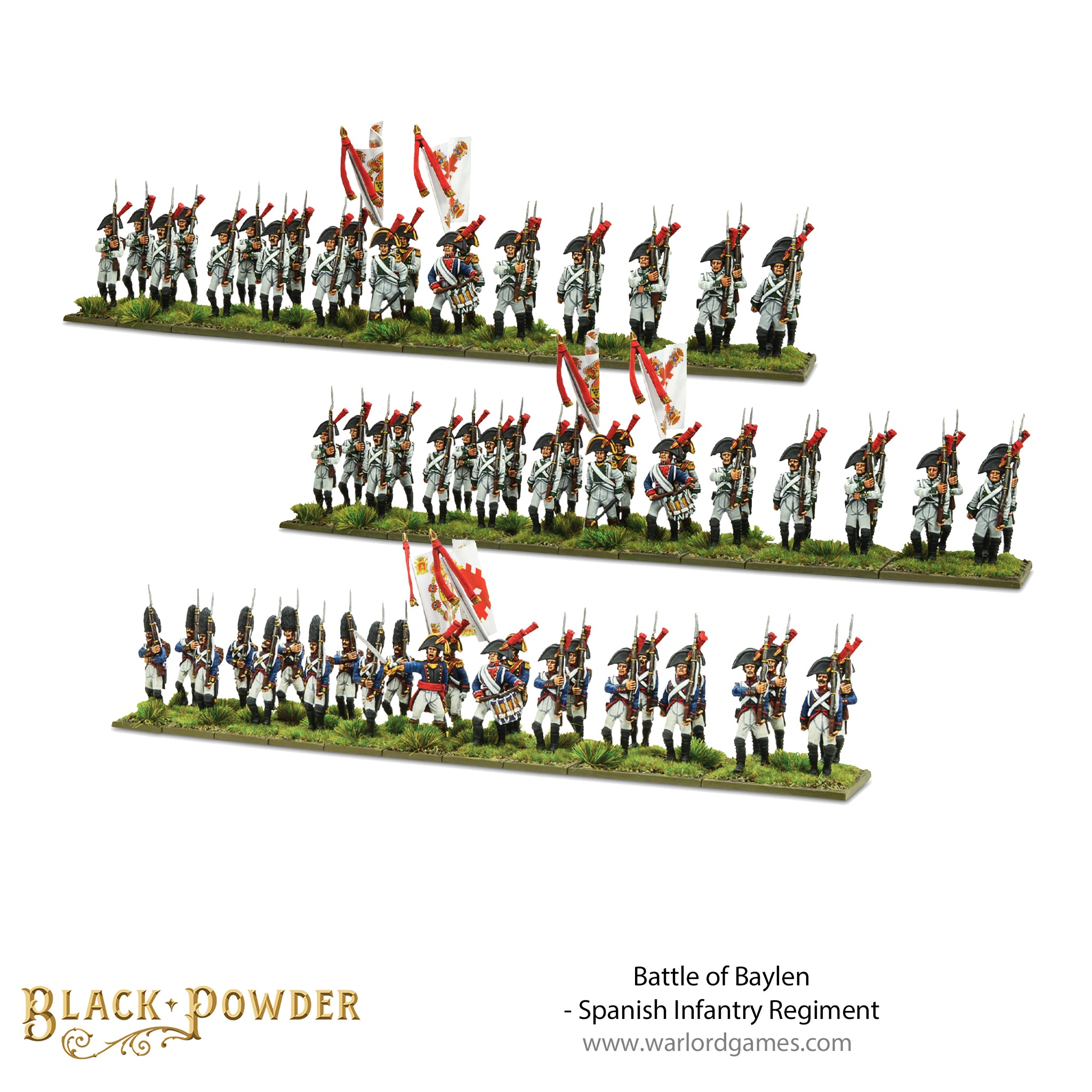 Battle of Baylen - Napoleonic Spanish Infantry Regiment