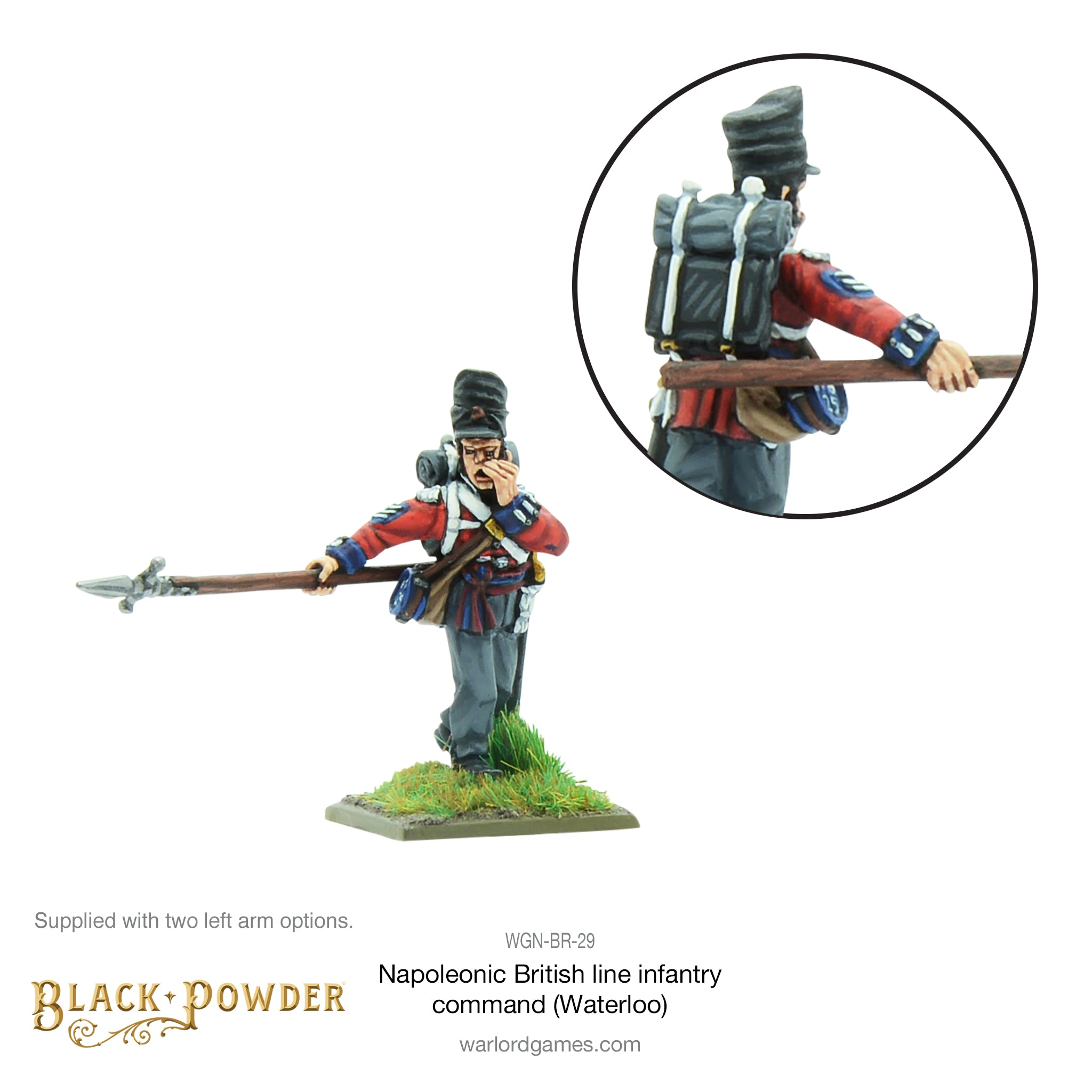 Napoleonic British Line Infantry command (Waterloo campaign)