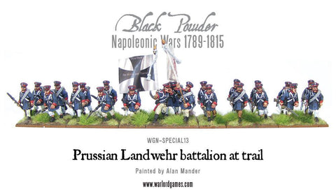 Napoleonic Prussian regiment at trail