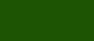 Model Colour 823 - Luftwaffe Camo Green