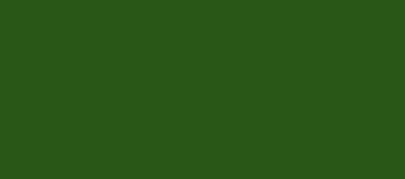 Model Colour 924 - Russian Uniform Green