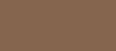 Model Colour 874 - Tan Earth