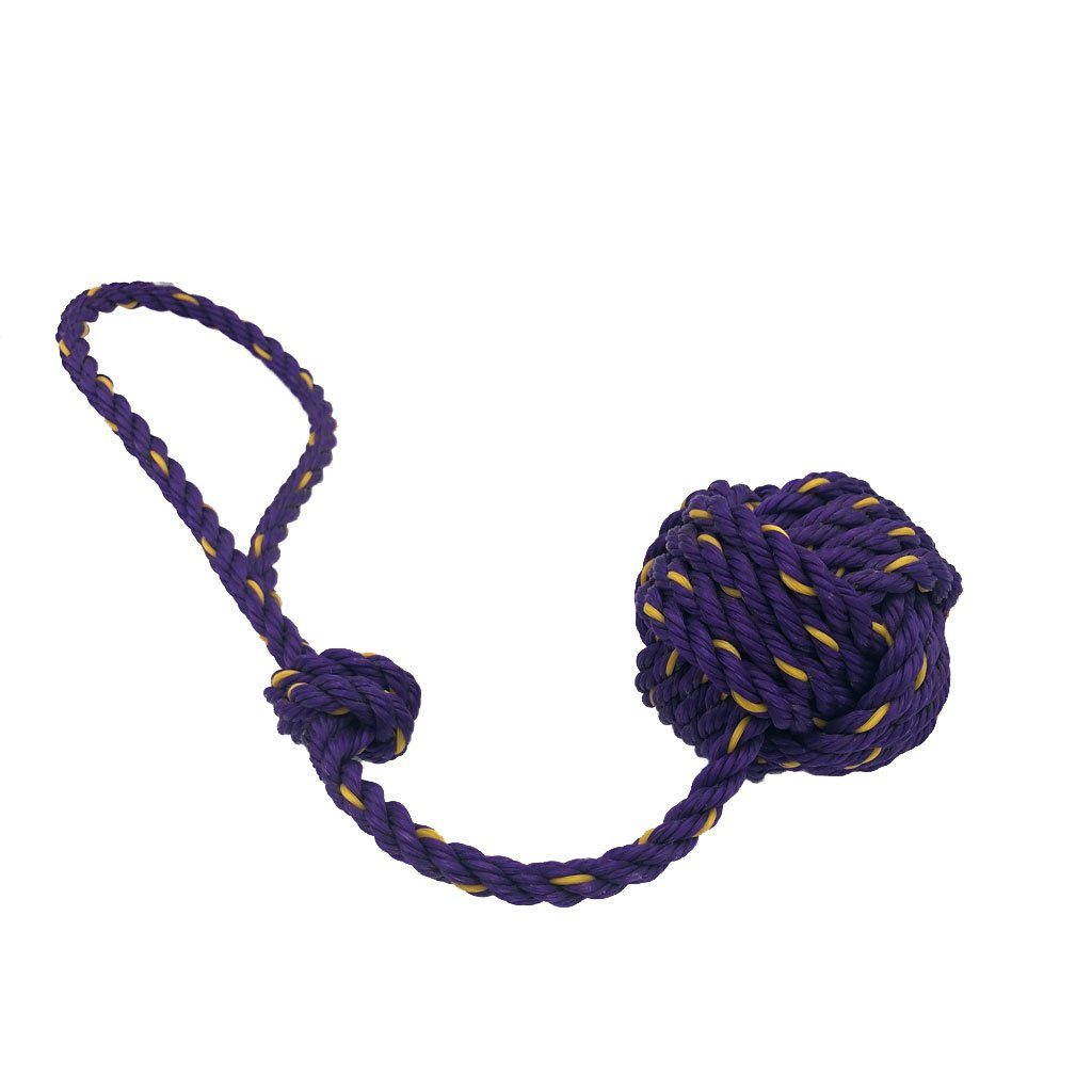 Lobster Rope Dog Toy - Purple