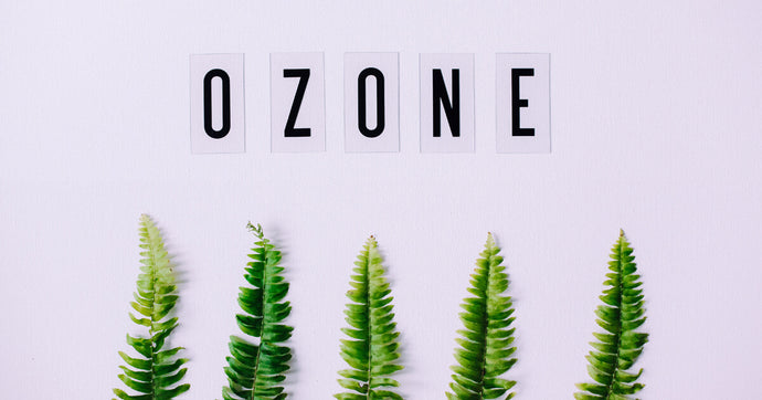 Ozone for Life: International Day for the Preservation of the Ozone Layer