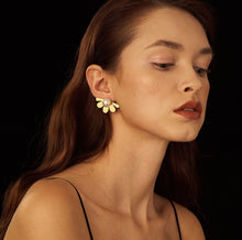 Load image into Gallery viewer, Isabella Pearl Earrings