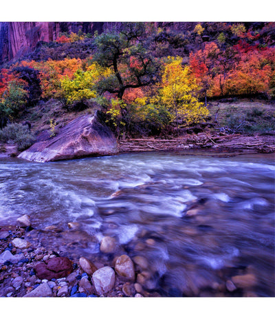 Autumn Glory art print - Richard Stefani - Stefani Fine Art