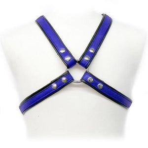 Leather Harness With Stripes
