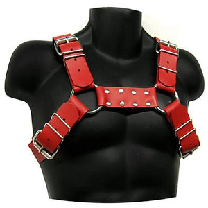 Garment Leather Bull Dog Harness