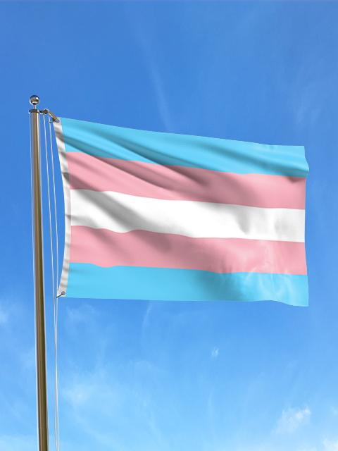 Transexual Pride Flag