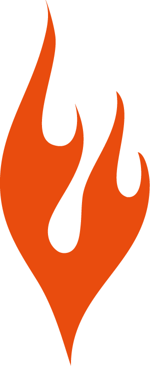 flame orange logo