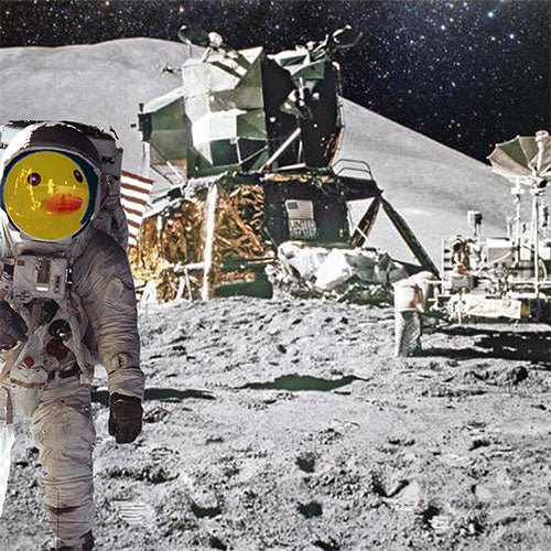 The Most Interesting Duck Apollo 11 on the moon