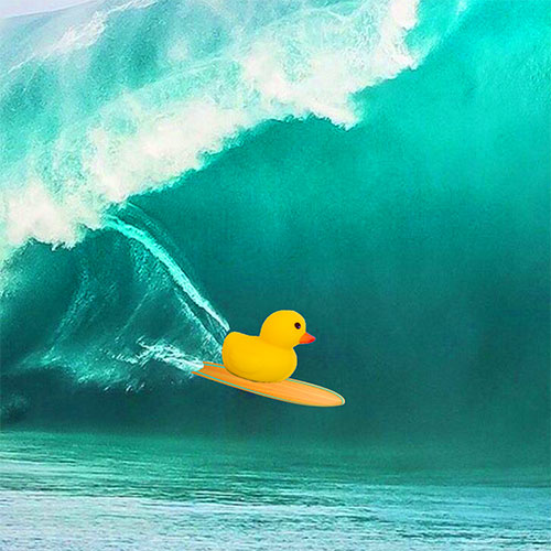 The Most Interesting Duck surfing gigantic wave