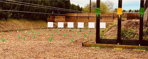 Targets at the Emmett and Stone Air Rifle Range