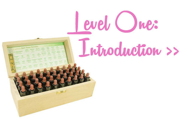 Bach Flower Remedies Course - Level 1 Introduction