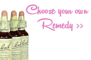 Di Stodart - Bach Flower Remedies - Consultations