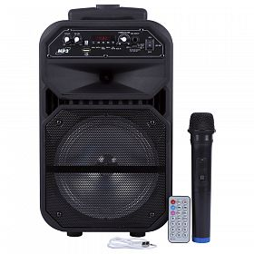 ND-6009 BT High Quality Sound Trolley Speaker With Wireless Mic, FM, USB & SD Card Slot - Black