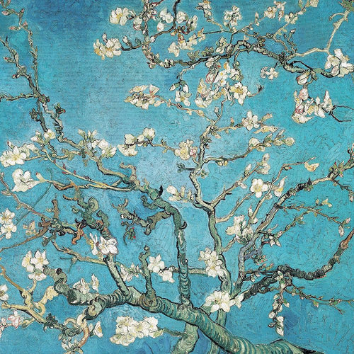 Blossoms by Vincent Van Gogh
