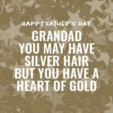 Fathers Day: Silver Hair