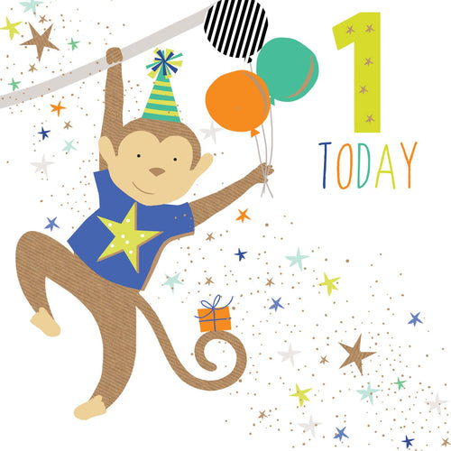 1 Today Boy Monkey