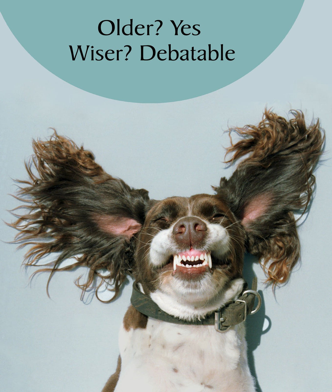 Wiser Happy Dog
