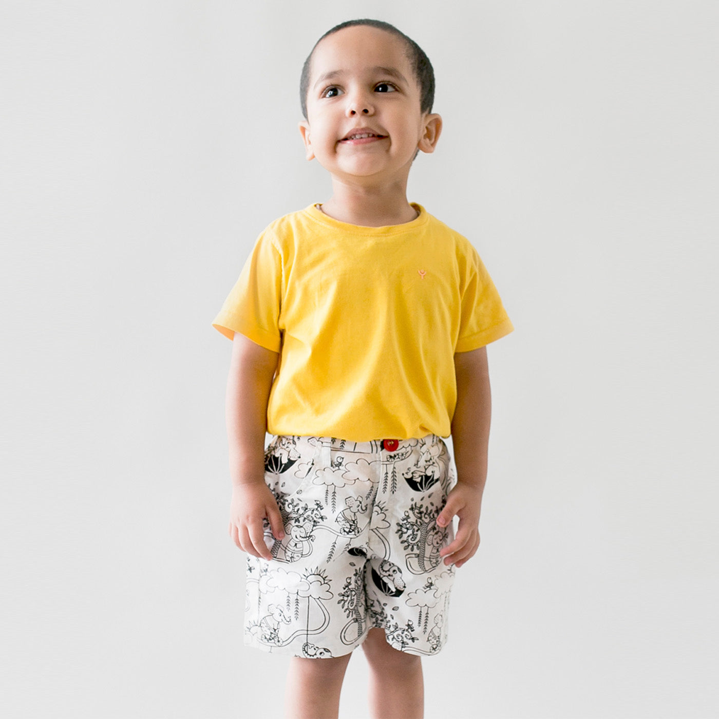 Boy Color & Wear Shorts