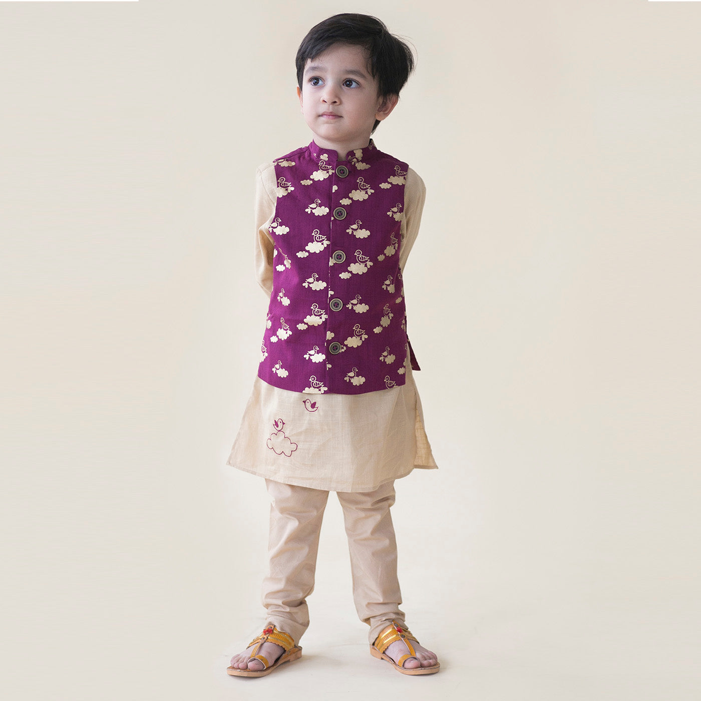 Boy Purple Bird Print Nehru Jacket