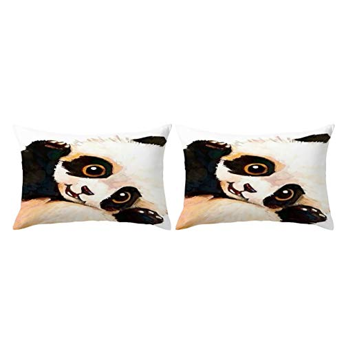 ARIGHTEX Sleeping Panda Pillow Cases Vintage Panda Bear Pillow Case Wildlife Animal Black and Brown Pillow Covers Set of 2 Sleepy King 20 x 36 mKG-B07C8ZY1XD