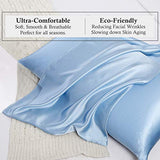 UORG 100 Mulberry Silk Pillowcase for Hair and Skin 22 Momme 600 Thread Count Pure Natural Slip Silk Both Sides Hypoallergenic Soft Breathable Hidden Zipper1 Pc Queen 20x30 Light Blue ySg-B07WSF8667