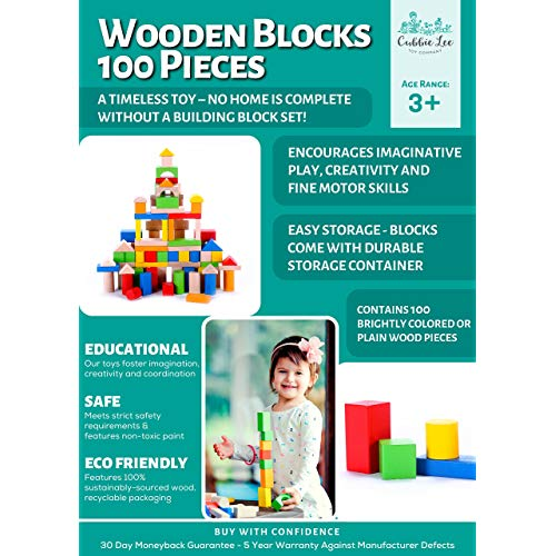 100 pc for Toddlers Preschool Age Classic Hardwood Plain /& Colored Small Wood Block Pieces for Boys /& Girls Basic Educational Build /& Play Toy Wooden Building Blocks Set