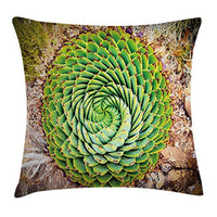 Ambesonne Plant Throw Pillow Cushion Cover National Flower of Lesotho South of Africa Aloe Polyphylla Spinning Spiral Aloe Vera Decorative Square Accent Pillow Case 20 X 20 Fern Green