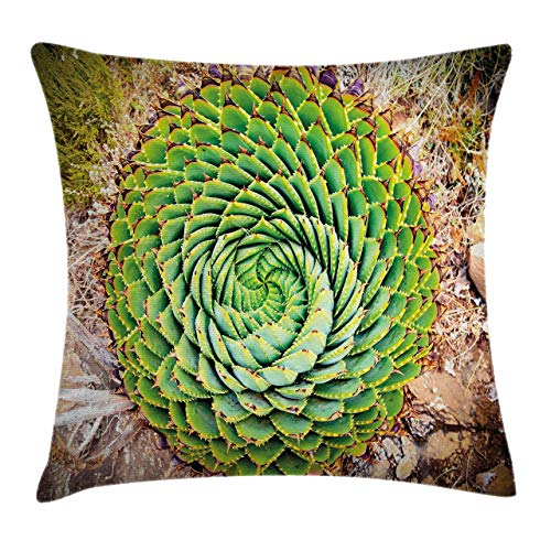 Ambesonne Plant Throw Pillow Cushion Cover National Flower of Lesotho South of Africa Aloe Polyphylla Spinning Spiral Aloe Vera Decorative Square Accent Pillow Case 16 X 16 Fern Green