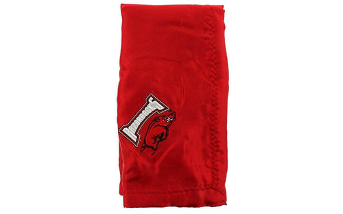 Arkansas Razorbacks Baby Blanket