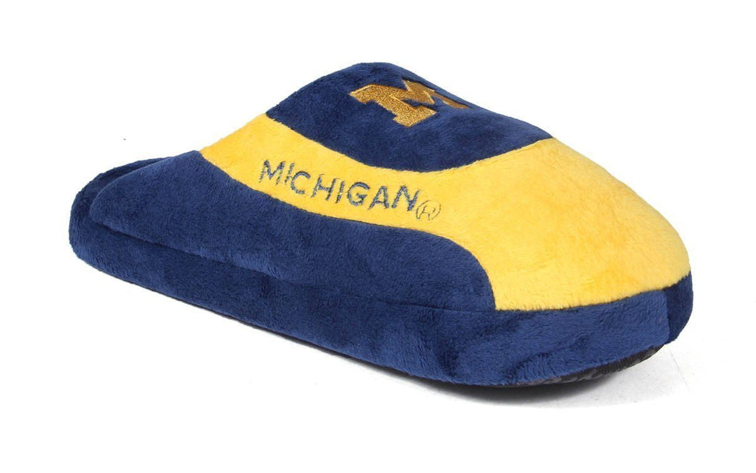 Michigan Wolverines Low Pro