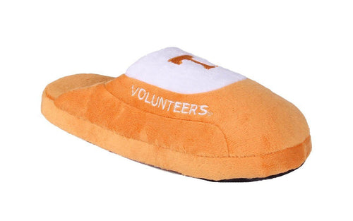 Tennessee Volunteers Low Pro