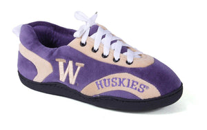 Washington Huskies All Around