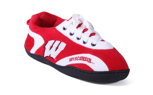 Wisconsin Badgers All Around
