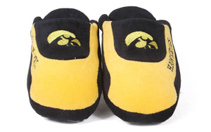 Iowa Hawkeyes Low Pro