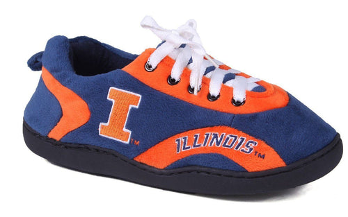 Illinois Fighting Illini All Around