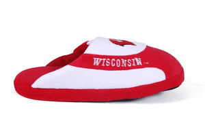 Wisconsin Badgers Low Pro